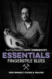 Which Fingerstyle Blues Course? | David Hamburger